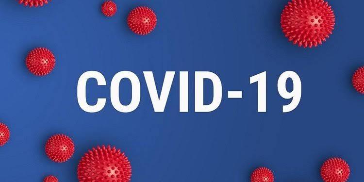 Petani Lebak Dambakan Bantuan di Tengah Pandemi COVID-19